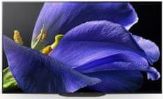 Televize Sony KD-55AG9